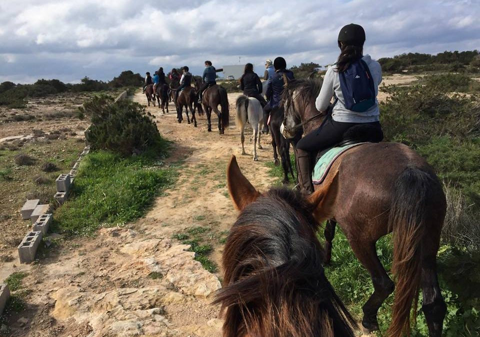 Actividades para grandes y pequeños en Ibiza y Formentera